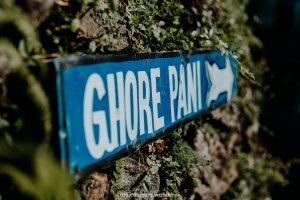 Ghorepani: Poon Hill Trek